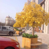 large natural yellow leavs artificial ginkgo tree
