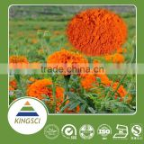 cGMP Manufacturer Supply 100% Natural Marigold Flower Extract Lutein Powder No Side Effect & Pesticide for Health Food KS-01