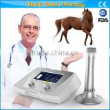 Extracorporeal Equine Shock wave therapy equipments in equestrian sports,Veterinary Use