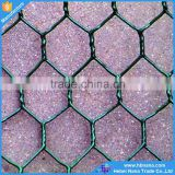 China supplier Anping Hexagonal Mesh / Hexagonal Wire Netting / Chicken Wire Mesh with competitive