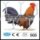 alibaba China wholesale CE&ISO certificated chicken coop hexagonal wire mesh(pro manufacturer)