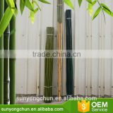 Retractable straight factory raw tonkin bamboo canes at cheap price