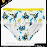 OEM/ODM knitting cotton pictures of boys in underwear with cheap price