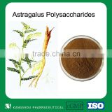Organic Anti-aging Plant Astragalus Root Extract 20%Astragalus Polysaccharides                                                                         Quality Choice