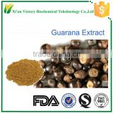 manufacture sales guarana particulara seed extract