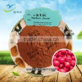 Lower Blood Pressure Hawthorn Berry Extract Hawthorn Flavone Powder