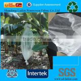 pp spunbond nonwoven banana protection cover/ nonwoven plant protective bags/ pp plant protect fabric
