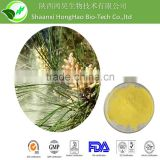 100% Pure Natural High Quality pollen powder extract/pine pollen extract/pine pollen powder