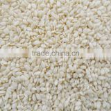 Indian Sesame Seeds Exporters