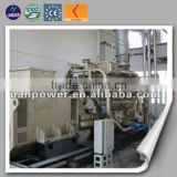 Reliable chinese manufacturer biogas electric generator China biogas plant to generate electricity