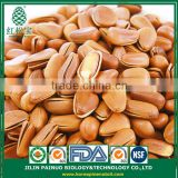 Wholesale Dietary Supplyment Siberian Open Pine Nuts in Shell