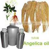 100%natural organic angelica root oil suppliers