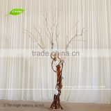 GNW WTR1606003 2.7m Height Nature Wood Trunk Winter Tree Decoration Dry Tree With Hydrangea Flower