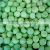 Supply IQF frozen melon ball with good quality for sale                                                                         Quality Choice