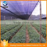 anti hail net plastic rolls hdpe agricultural shade net 3-6 niddle knitted green sun shade net