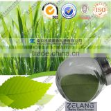 Wholesale Fine Barley Grass Powder Organic In Bulk