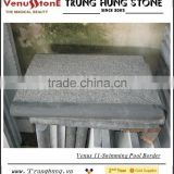 Vietnam Bluestone Swimming Pool Border
