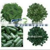 Very hot selling Chlorella powder/Capsules/Tablet