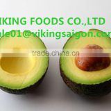 INquiry about BEST QUALITY OF FRESH AVOCADO FRUIT