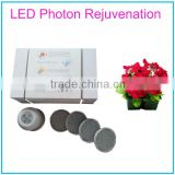Latest Item 4 Colors Photon LED Light Therapy System Beauty Device with Changeable LED Heads