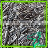 Wholesale Black Oil Sunflower Seeds 2016 Crop Competitive Price