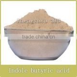 Hot selling Indole-3-butyric acid (IBA) 95%TC, rooting promoter