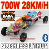 Electric Skateboard Brushless 700W