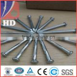 Concrete nail / Galvanized steel nails / black concrete nail