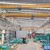 china famous professional 10 ton single girder crane