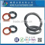 Made in Taiwan Radial Shaft Sealing Ring DIN3760 Oil Seal