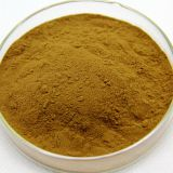 Manufactory Supply Fenugreek Seed Extract 98% Trigonelline