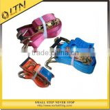 Widely Uesd Ratchet Tie Down Belts/belts buckle