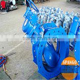 wafer type double eccentric butterfly valve in hot sale