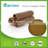 Iso Factory Provide Best Ceylon Cinnamon Powder
