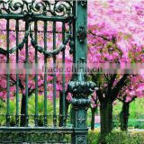 european luxury design classic style wrought iron gate (BG90235)