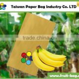 TPBI Taiwan high quality waterproof paper bag growing paper bag banana paper bag ba