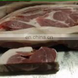 IS-BS250 Meat Bone Saw Sawing Frozen Meat Bone Saw