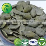 Crop Top Pumpkin Seeds GWS Oil Prostatic