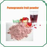 Bulk Dried pomegranate powder pomegranate extract powder
