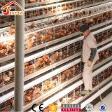 Galvanized Q235 Steel Hen Laying Battery Cage Price A Type Chicken Egg Layer Cages Automatic Poultry Farm House Design