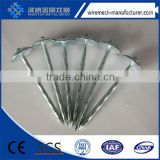 galvanized umbrella smooth/twist shank coil roofing nails                                                                         Quality Choice