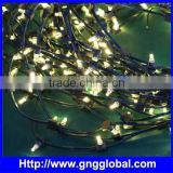 DC12V strawhat high quality good price led string lights