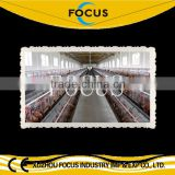 poultry farming equipment chicken layer cage with farming house construction design