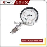 flush diaphragm antivibration homogenizer pressure gauge