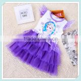 Beautiful Summer Frozen Dress Princess Elsa Printed Lace Tutu Dress Cartoon Movie Frozen Girl Dress Cosplay Costumes Frozen Tutu