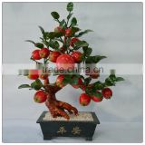 Jade 18 Piece Apple Tree big size tree ,natural stone tree ,holiday decoration money tree