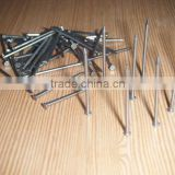 common iron nails /nails making machine produce                                                                         Quality Choice