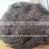 Scoured carded sheep wool waste, 30mic,1.5inch, natural brown color, natural black color