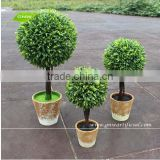 GNW GP002 Artificial Bonsai Plants Wholesale UV Plastic Green Color Small Potted Plant Indoor use