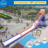 TOP INFLATABLES Hot selling castle with bouncy house inflatable water slide decal